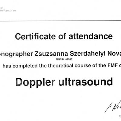 Certificate Of Attendance Doppler Ultrasound 2010