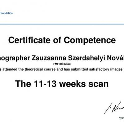 Zsuzsa Certificate Of Competence The 11 13 Weeks Scan 2010